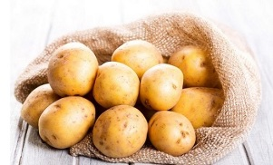 the use of potatoes for the treatment of varicose veins